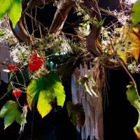 autunno allestimenti