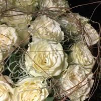 rose fiorista bianchi