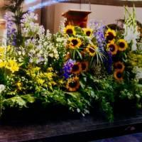 allestimento vegetativo decorativo