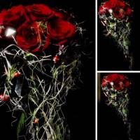 fiorista bianchi rose