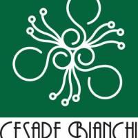 Fiorista Bianchi logo